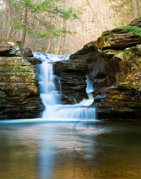 Murray Reynolds Falls, Ricketts Glen